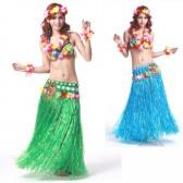夏威夷草裙舞套装/服装/明星模特化妆舞会/表演套装/六件套QC0508(加盟分销)