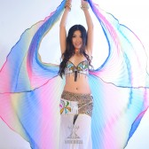 舞姿翼表演练习道具 肚皮舞彩翅 肚皮舞奥利纱渐变色翅膀DJ1015(加盟分销)