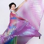 舞姿翼|肚皮舞配饰/舞台表演道具/幻彩翅膀/渐变色翅膀DJ1014(加盟分销)